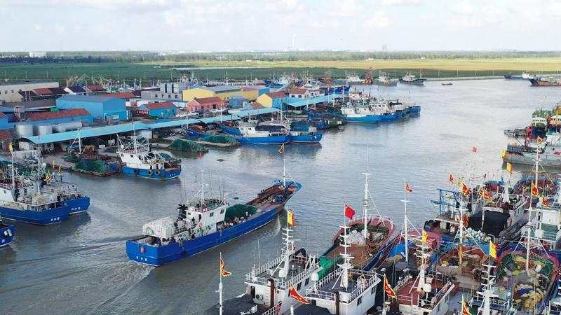 走進鄉村看小康 向海而生 豐饒黃沙港再現漁都魅力