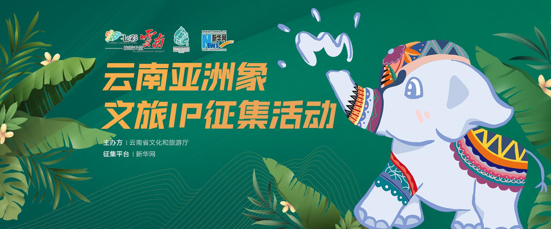 雲南亞洲象文旅IP徵集活動