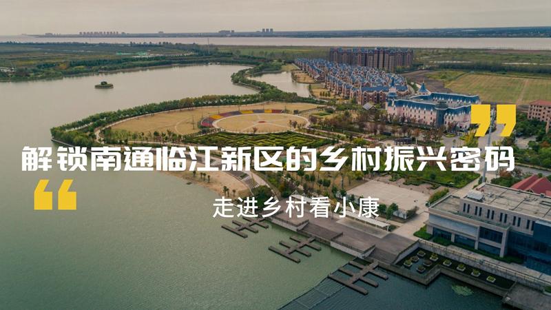 解鎖南通臨江新區的鄉村振興密碼