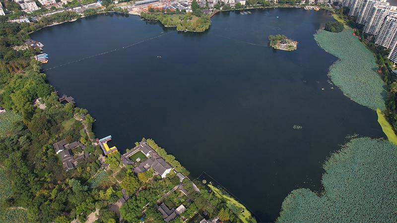 """南京有座湖,走出""""愛你""""的形狀"""